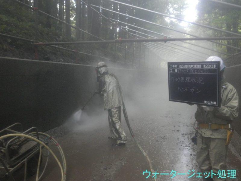 三面川左岸(1期)地区 第25次工事
