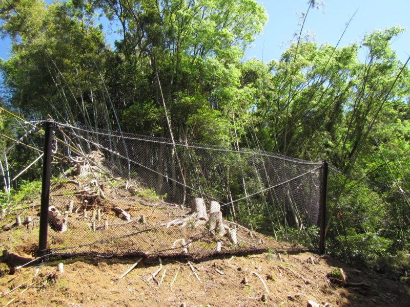 林地荒廃防止事業 清水寺地区落石対策工事