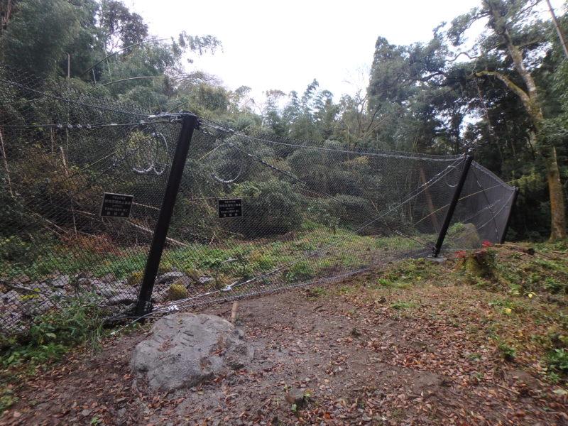林地荒廃防止事業清水寺地区落石対策工事