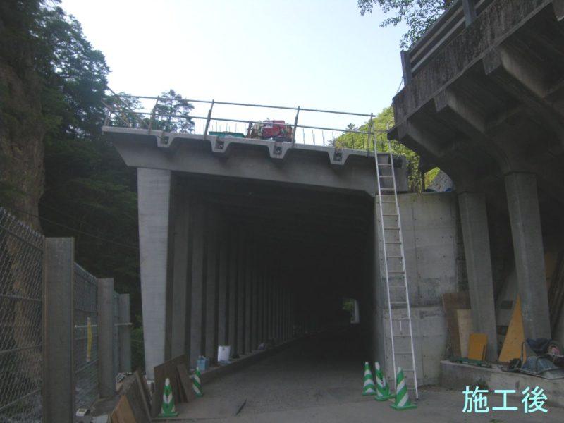 都道日原鍾乳洞線道路災害防除工事(27西の9)