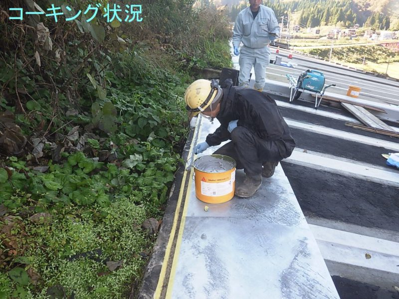 国道252号防災安全(洞門補修)中仙田第1SS補修工事