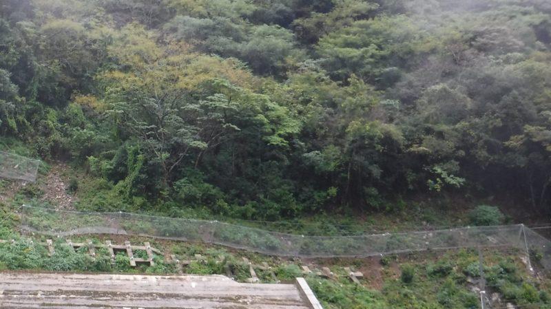 主要地方道桜江金城線(市山2工区)防災安全交付金(改築)落石対策工事